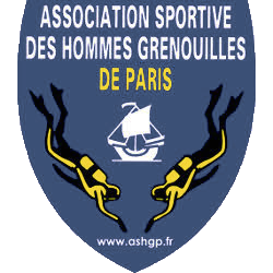 Logo ASHGP 2020