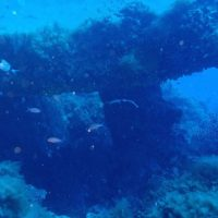 ashgp club de plongee paris 19 voyage lavandou 2019 22