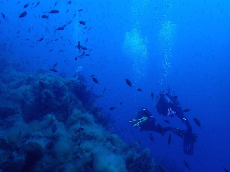 ashgp club de plongee paris 19 voyage lavandou 2019 23