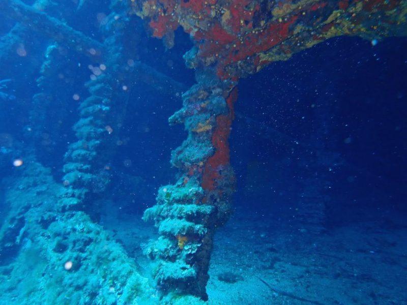 ashgp club de plongee paris 19 voyage lavandou 2019 34