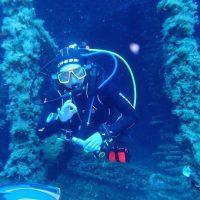 ashgp club de plongee paris 19 voyage lavandou 2019 36