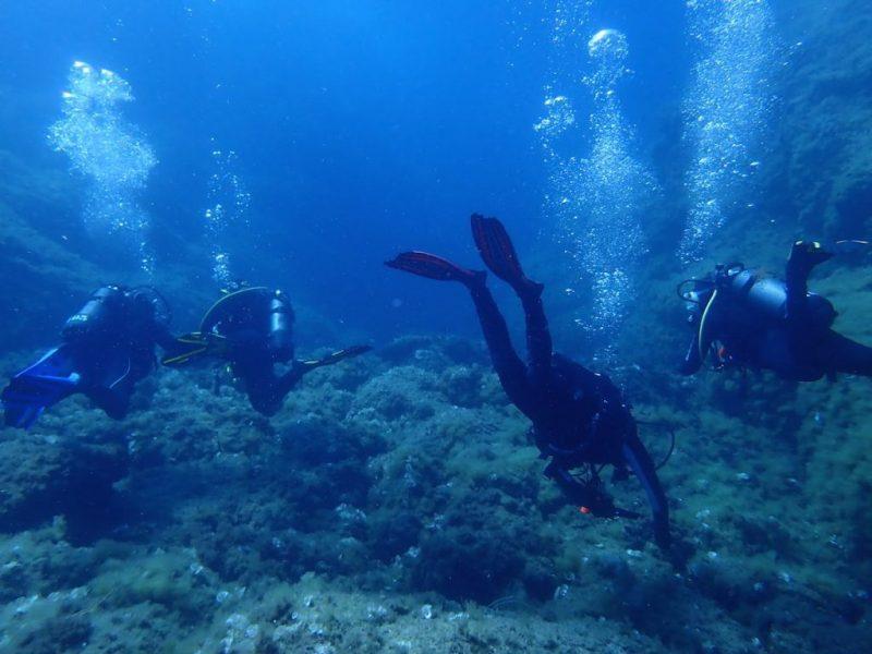 ashgp club de plongee paris 19 voyage lavandou 2019 39