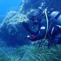 ashgp club de plongee paris 19 voyage lavandou 2019 47